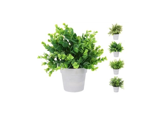 Planta artificial Continente, antes a 6€ e agora a 3€