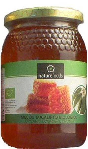 Mel de eucalipto biológico, 9,99€ no Celeiro